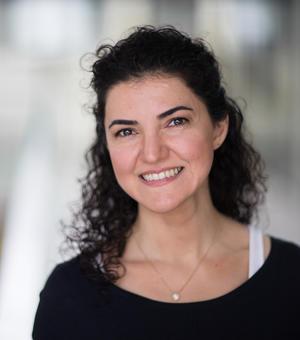 Sareh Vosooghi